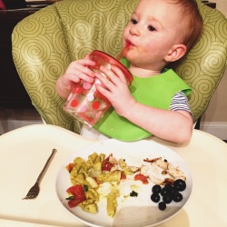 Baby Led Weaning 15 Months